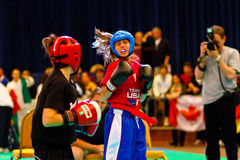 3rd world kickboxing championship 2011 Royalty Free Stock Images