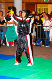 3rd world kickboxing championship 2011 Stock Photography