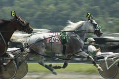4上马具的赛马比赛 免版税库存照片