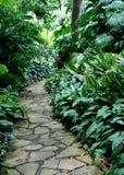 4个庭院路径 库存照片