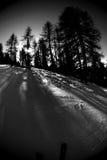 4个活动bw滑雪 免版税库存照片