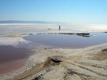 4个湖盐 免版税库存图片