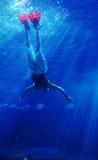 4个潜水的鲨鱼 库存照片