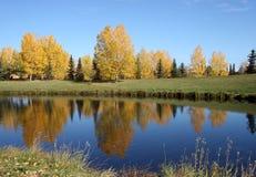 4个秋天池塘 免版税库存照片