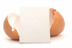 4个空看板卡破裂的鸡蛋 库存照片