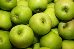 4个苹果绿色 免版税库存图片