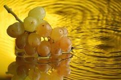 4个葡萄 免版税库存照片