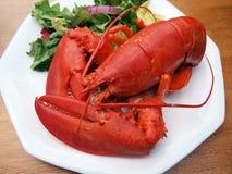 4只龙虾膳食 库存照片
