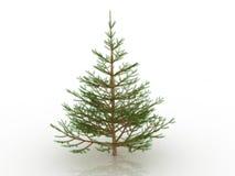 4大圣诞树 库存图片