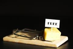 4干酪释放 免版税库存图片