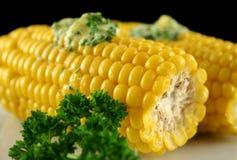 4新鲜的玉米 库存图片