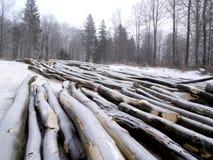 4木料 免版税库存图片
