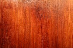 4木的纹理 库存照片
