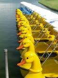 4条小船鸭子 免版税库存图片