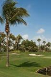 4条路线佛罗里达高尔夫球绿色 免版税库存照片