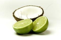 4椰子 免版税库存图片