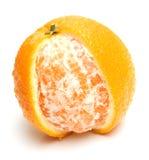 4橙色成熟 免版税库存照片