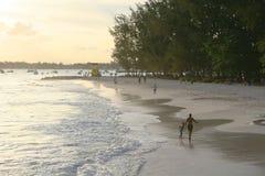 4热带的海滩 免版税库存照片