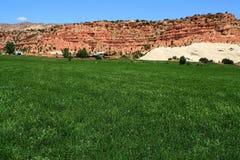4片沙漠农场 库存照片