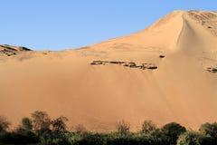 4片沙漠埃及人 免版税库存图片