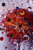 4色的大丽花下落水 免版税库存照片