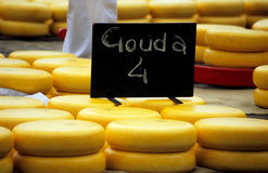 4荷兰扁圆形干酪您 图库摄影
