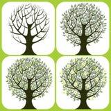 4 árboles Imagenes de archivo