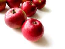 4 äpplen Arkivfoto