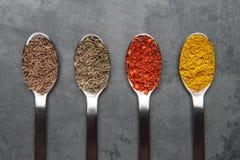 4 épices sur des cuillères Photos libres de droits