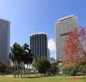 4 śródmieście Miami Fotografia Royalty Free