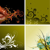 4 ανασκοπήσεις floral Διανυσματική απεικόνιση