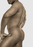 4 αρσενικός nude Στοκ Φωτογραφία