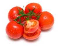 4 καλύτερες ντομάτες Στοκ εικόνα με δικαίωμα ελεύθερης χρήσης
