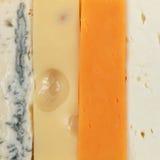 4 разного вида сыра Стоковое фото RF