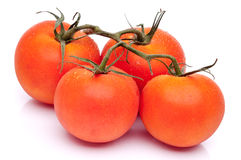 4 свежих зрелых томата Стоковое фото RF