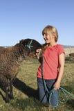 4 детеныша овечки h девушки Стоковые Изображения
