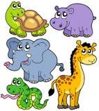 4个非洲动物收藏 免版税库存照片