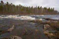 4 2008 kitsa Murmansk Obraz Royalty Free
