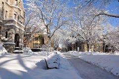 4 2010 śnieg Zdjęcia Stock