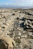 4岩石的海滩 库存照片