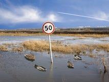 4 50 скорости Стоковое Изображение RF