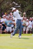 4 6 full swing Tiger Woods Royaltyfri Fotografi