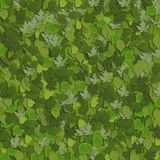 4 зеленых листь стоковые изображения rf