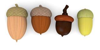 4 acorns Stock Images