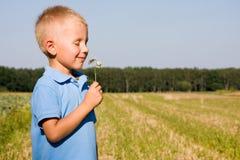 4 anni del ragazzo di fiore sentente l'odore della margherita Fotografie Stock Libere da Diritti
