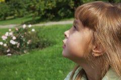 4 anos bonitos da menina idosa Foto de Stock Royalty Free