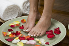 4 aromatherapy πόδια που χαλαρώνουν τ& Στοκ εικόνα με δικαίωμα ελεύθερης χρήσης