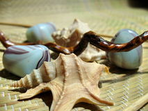 4 aromatherapy凝思 免版税图库摄影