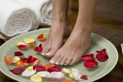 4 aromatherapy fot som kopplar av brunnsorten Royaltyfri Bild