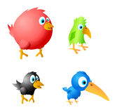 4 birds Stock Photos